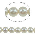 Round Beads kulturuar Pearl ujërave të ëmbla, Pearl kulturuar ujërave të ëmbla, natyror, e bardhë, 6-7mm, : 0.8mm, :14.5Inç, 52PC/Fije floku,  14.5Inç,