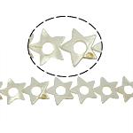 Beads Natyrore White Shell, Yll, asnjë, e bardhë, 26x26x3mm, : 2mm, :15.5Inç, 16PC/Fije floku,  15.5Inç,