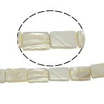 Beads Natyrore White Shell, Drejtkëndësh, asnjë, e bardhë, 11x15x4mm, : 2mm, :15.5Inç, 25PC/Fije floku,  15.5Inç,
