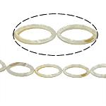 Beads Natyrore White Shell, Oval, asnjë, e bardhë, 19x37x3mm, : 2mm, :15.5Inç, 11PC/Fije floku,  15.5Inç,