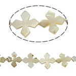 Beads Natyrore White Shell, Kryq, asnjë, e bardhë, 21x3mm, : 2mm, :15.5Inç, 20PC/Fije floku,  15.5Inç,
