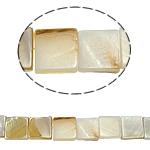 Beads Natyrore White Shell, Katror, asnjë, e bardhë, 10x3mm, : 2mm, :15.5Inç, 40PC/Fije floku,  15.5Inç,
