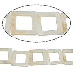 Beads Natyrore White Shell, Katror, asnjë, e bardhë, 25x3mm, : 2mm, :15.5Inç,  15.5Inç,