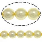 Detit të Jugut Beads Shell, Jug Deti Shell, Round, asnjë, i verdhë, 10mm, : 0.5mm, :15.5Inç, 40PC/Fije floku,  15.5Inç,
