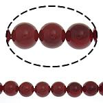 Detit të Jugut Beads Shell, Jug Deti Shell, Round, asnjë, i kuq, 10mm, : 0.5mm, :16Inç, 40PC/Fije floku,  16Inç,