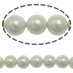 Detit të Jugut Beads Shell, Jug Deti Shell, Round, asnjë, e bardhë, 10mm, : 0.5mm, :15Inç, 38PC/Fije floku,  15Inç,