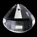 Crystal Pendants, Kristal, Lot, Kristal, 18x20x8mm, : 1mm, 10PC/Qese,  Qese