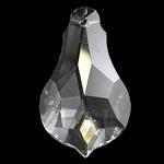 Crystal Pendants, Kristal, Kungull uji, Kristal, 28x50x13mm, : 1mm,  PC