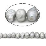 Barok Beads kulturuar Pearl ujërave të ëmbla, Pearl kulturuar ujërave të ëmbla, AA, 12-16mm, : 0.8mm, :15Inç,  15Inç,