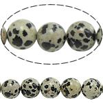 Beads Dalmatian, Round, natyror, 14mm, : 1.5mm, : 15.5Inç, 5Fillesat/Shumë,  Shumë