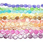 Beads Natyrore Colored Shell, Predhë, Monedhë, asnjë, ngjyra të përziera, 24x4mm, : 1.5mm, :15.5Inç, 10Fillesat/Qese,  Qese