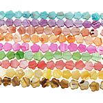 Beads Natyrore Colored Shell, Predhë, Lule, asnjë, ngjyra të përziera, 16x15x3mm, : 1.5mm, :15.5Inç, 10Fillesat/Qese,  Qese