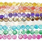 Beads Natyrore Colored Shell, Predhë, Monedhë, asnjë, ngjyra të përziera, 15x3mm, : 1mm, :15Inç, 10Fillesat/Qese,  Qese