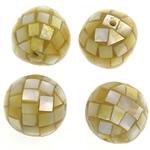Beads Natyrore Shell Verdha, Oval, asnjë, i verdhë, 15-16x15-16mm, : 1.5mm, 20PC/Qese,  Qese