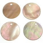 Pendants Shell, Predhë, Monedhë, 15x15x1-1.5mm, : 1mm, 200PC/Qese,  Qese