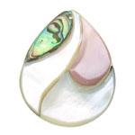 Pendants Shell, Predhë, Lot, approx 43x34x5mm, : 1.5mm, 10PC/Qese,  Qese