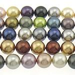 Detit të Jugut Beads Shell, Jug Deti Shell, Round, asnjë, ngjyra të përziera, 12mm, : 0.8mm, : 16Inç, 3Fillesat/Qese,  Qese
