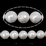 Detit të Jugut Beads Shell, Jug Deti Shell, Round, asnjë, e bardhë, 14mm, : 0.8mm, : 16Inç, 30PC/Fije floku,  16Inç,