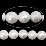 Detit të Jugut Beads Shell, Jug Deti Shell, Round, asnjë, e bardhë, 8mm, : 0.8mm, : 16Inç, 49PC/Fije floku,  16Inç,