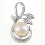 Pendants Pearl ujërave të ëmbla, Pearl kulturuar ujërave të ëmbla, natyror, e bardhë, 13x22.80x6.50mm, : 4.2x7.5mm, 20PC/Qese,  Qese