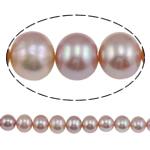 Barok Beads kulturuar Pearl ujërave të ëmbla, Pearl kulturuar ujërave të ëmbla, AA, 10-11mm, : 1mm, :15Inç,  15Inç,