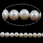 Round Beads kulturuar Pearl ujërave të ëmbla, Pearl kulturuar ujërave të ëmbla, natyror, e bardhë, Një, 7-8mm, : 0.8mm, :15Inç,  15Inç,
