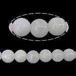 Beads Giant molusqe, Melodik Giant, Round, sintetik, i tejdukshëm, e bardhë, 16mm, : 1mm, : 15Inç, 5Fillesat/Shumë,  Shumë