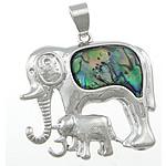 Pendants Natyrore predhë guaskë, Shell Guaskë, Elefant, ngjyrë platin, 40x39x5mm, : 5.5x8mm, 10PC/Shumë,  Shumë