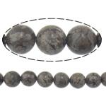Snowflake Beads xham vullkanik, Snowflake Obsidian, Round, 12mm, : 2mm, :15.8Inç, 10Fillesat/Shumë,  Shumë