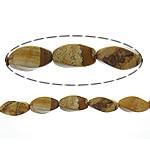 Picture Beads Jasper, Picture Jasper, Kthesë, natyror, 8x16mm, : 1.2mm, :16Inç, 10Fillesat/Shumë,  Shumë