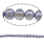 Barok Beads kulturuar Pearl ujërave të ëmbla, Pearl kulturuar ujërave të ëmbla, i lyer, purpurtë drita, 5-6mm, : 1mm, :15.4Inç,  15.4Inç,