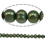Barok Beads kulturuar Pearl ujërave të ëmbla, Pearl kulturuar ujërave të ëmbla, i lyer, jeshile të thellë, 5-6mm, : 1mm, :15.4Inç,  15.4Inç,