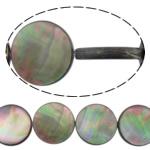 Beads Zi Shell, Monedhë, natyror, asnjë, asnjë, 8x8x3mm, : 0.7mm, :16Inç, 10Fillesat/Shumë,  Shumë