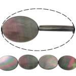 Beads Zi Shell, Oval Flat, natyror, asnjë, asnjë, 18x25x3mm, : 0.7mm, :15.5Inç, 5Fillesat/Shumë,  Shumë