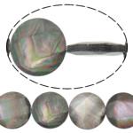 Beads Zi Shell, Round Flat, natyror, asnjë, asnjë, 20x20x4mm, : 0.7mm, :16.5Inç, 3Fillesat/Shumë,  Shumë
