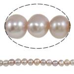 Barok Beads kulturuar Pearl ujërave të ëmbla, Pearl kulturuar ujërave të ëmbla, Round, asnjë, vjollcë, 6-7mm, : 0.8mm, : 14.5Inç,  14.5Inç,