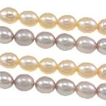 Rajs Beads ujërave të ëmbla kulturuar Pearl, Pearl kulturuar ujërave të ëmbla, Oriz, asnjë, ngjyra të përziera, Një, 4-5mm, : 0.8mm, :14.7Inç,  14.7Inç,