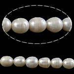 Rajs Beads ujërave të ëmbla kulturuar Pearl, Pearl kulturuar ujërave të ëmbla, Oriz, asnjë, e bardhë, Një, 10-11mm, : 2mm, : 15.3Inç,  15.3Inç,