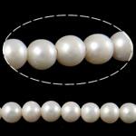 Barok Beads kulturuar Pearl ujërave të ëmbla, Pearl kulturuar ujërave të ëmbla, Round, asnjë, e bardhë, 11-12mm, : 2.5mm, :15.7Inç,  15.7Inç,