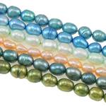 Cluster Ball Beads kulturuar Pearl, Pearl kulturuar ujërave të ëmbla, Oriz, natyror, ngjyra të përziera, Një, 4-5mm, : 1mm, :14.5Inç,  Qese
