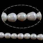 Barok Beads kulturuar Pearl ujërave të ëmbla, Pearl kulturuar ujërave të ëmbla, Nuggets, natyror, e bardhë, 11-12mm, : 2mm, :15Inç,  15Inç,