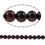 Round Beads kulturuar Pearl ujërave të ëmbla, Pearl kulturuar ujërave të ëmbla, i lyer, i kuq, Një, 9-10, : 0.8mm, : 15Inç,  15Inç,