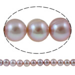 Barok Beads kulturuar Pearl ujërave të ëmbla, Pearl kulturuar ujërave të ëmbla, Round, natyror, vjollcë, 10-11mm, : 1mm, : 15.3Inç,  15.3Inç,