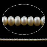 Button Beads ujërave të ëmbla kulturuar Pearl, Pearl kulturuar ujërave të ëmbla, Buton, natyror, e bardhë, 6-7mm, : 1mm, :14.5Inç,  14.5Inç,