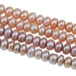 Button Beads ujërave të ëmbla kulturuar Pearl, Pearl kulturuar ujërave të ëmbla, Rondelle, natyror, ngjyra të përziera, 5-6mm, : 0.8mm, : 14.8Inç,  14.8Inç,
