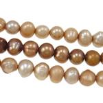 Barok Beads kulturuar Pearl ujërave të ëmbla, Pearl kulturuar ujërave të ëmbla, Nuggets, natyror, ngjyra të përziera, 4.5-5mm, : 0.5mm, : 14.5Inç, 5Fillesat/Qese,  Qese