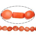 Beads Natyrore Coral, Coral Natyrore, Daulle, i lyer, kuq pak portokalli, 10x12x8mm, : 1mm, :17Inç, 10Fillesat/Shumë,  Shumë