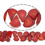 Beads Natyrore Coral, Coral Natyrore, Lot, i lyer, i kuq, 20x11x5mm, : 0.5mm, :16Inç, 10Fillesat/Shumë,  Shumë
