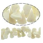Beads Natyrore Coral, Coral Natyrore, Lot, i lyer, bezh, 20x11x5mm, : 0.5mm, :16Inç, 10Fillesat/Shumë,  Shumë