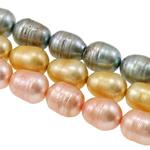 Rajs Beads ujërave të ëmbla kulturuar Pearl, Pearl kulturuar ujërave të ëmbla, Oriz, i lyer, ngjyra të përziera, 10-11mm, : 0.8mm, : 16.7Inç, 100Fillesat/Qese,  Qese